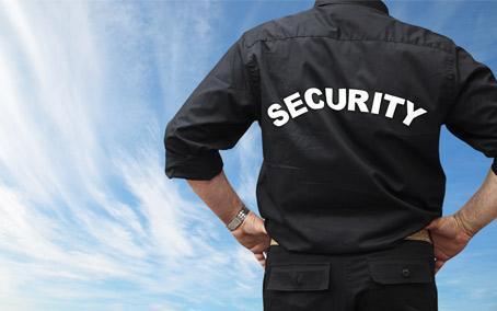 revisión médica seguridad privada tortosa